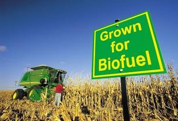 Nhiên liệu sinh học và lợi ích sử dụng